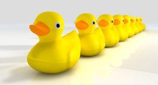 260_ducks in a row