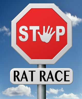 277_rat race