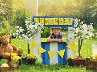 17_lemonade stand