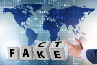 455_Fact_Fake