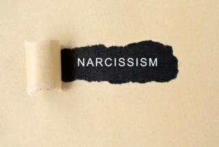 443_narcissism2